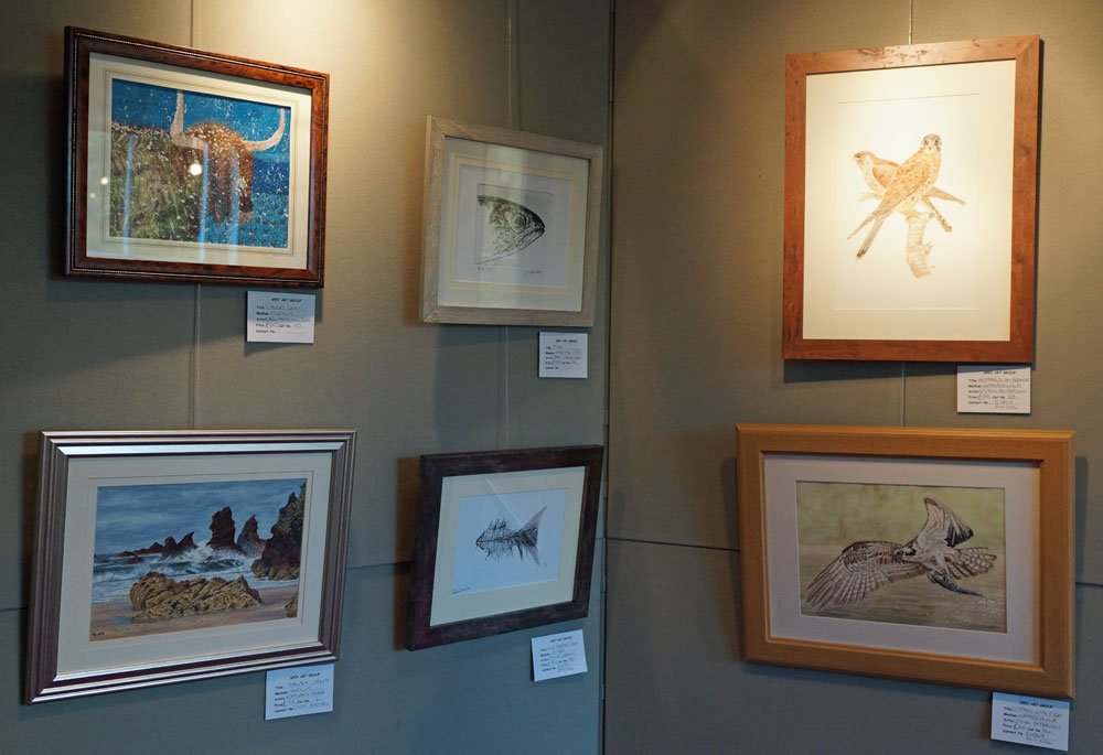 Wild and Free exhibition