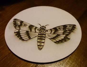 coaster, moth