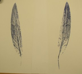 Two feather prints
