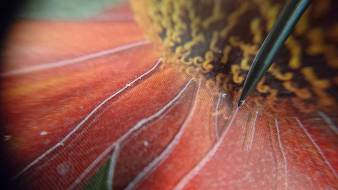 close-up shot of scratching into plastic