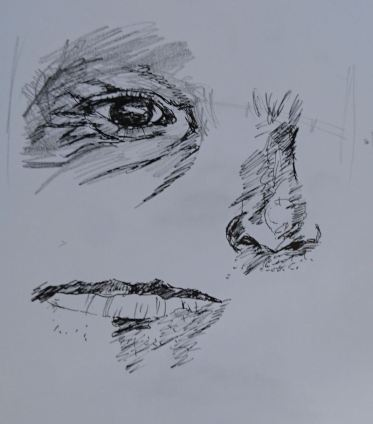 Practice sketches of facial features