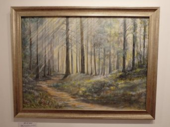 Anagach Woods by Ellis Rowe.